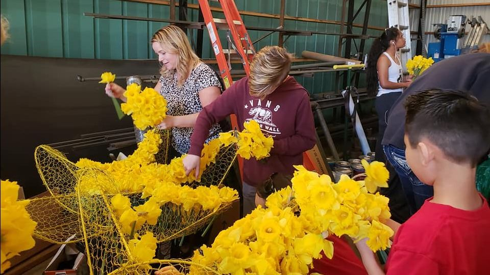 Daffodil Volunteers